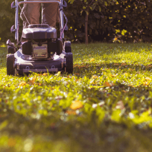 mulching leaves is a great way to give your lawn some nutrients before the winter
