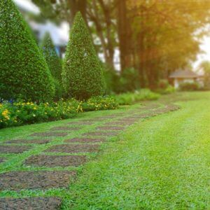 Lawn care services Auburn NH