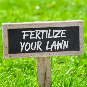 Fall lawn fertilization is a service that your Nashua, NH lawn is begging for.