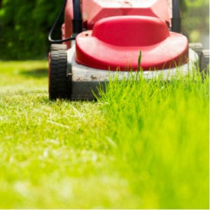 An essential step in winter lawn preparation is to make sure you continue mowing your lawn until the first hard freeze here in Londonderry, NH.