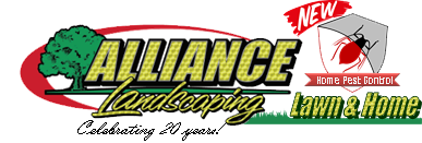 alliance-Logo_trans