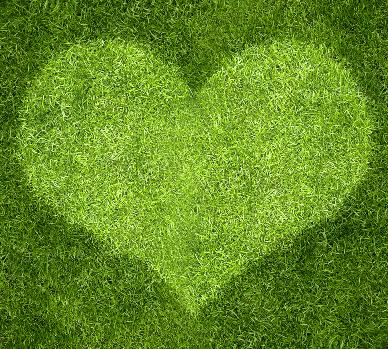 heart on grass