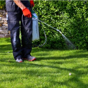 man on lawn with weed spray