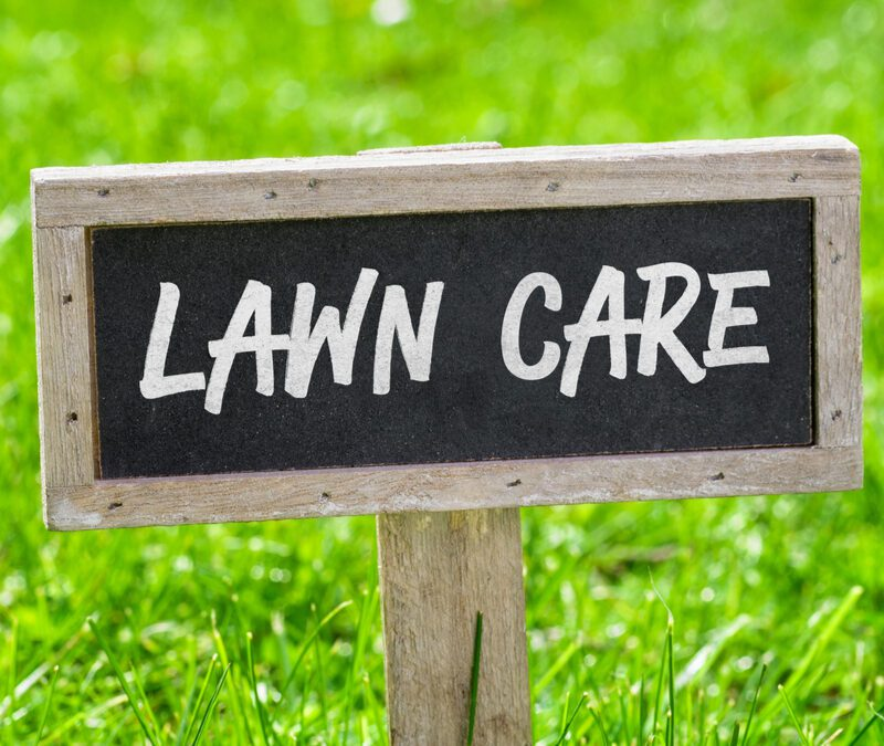 sign that says lawn care on grass